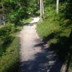 Forstweg entlang der Partnach