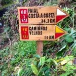 Faial C2C Trail 14