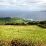 Faial C2C Trail 21