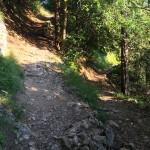 Downhill nach Interlaken
